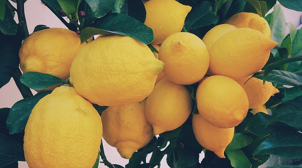 limone in profumeria