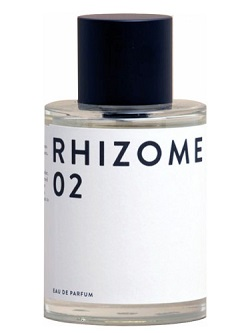 rhizome 02